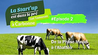 Episode 2 de la #StartUpDansLePre : la 'Phase Travail' à 'l'Abattoir' #TvLocale_fr